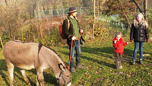 Camping Sulzbachtal Eselwanderungen