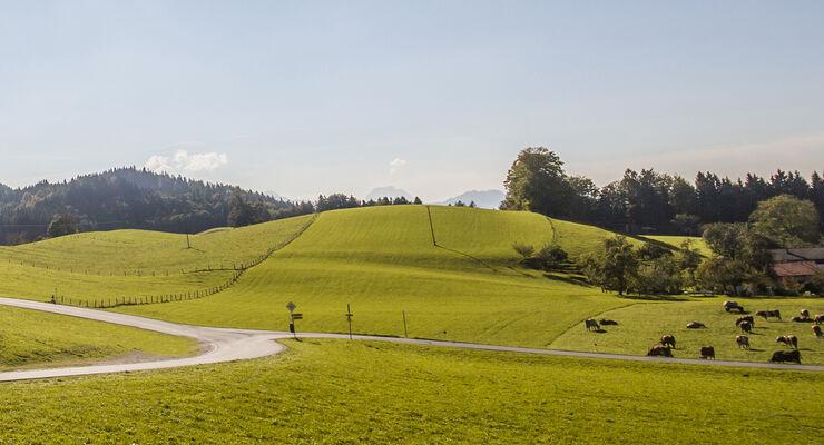 Chiemsee-Alpenland