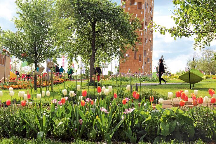 Reise-Journal: Landesgartenschau, Tulpen