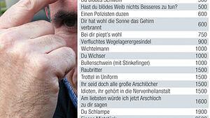Stinkefinger Strafe Beleidigung Polizei Autofahrer Reisemobil Wohnwagen Caravan Wohnmobil